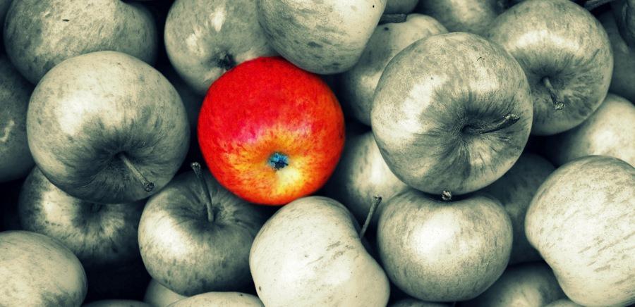 blogger e influencer: per i brand risorsa o bufala?
